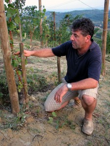 Angelo of Ca' Rossa in Mompissano Vineyard